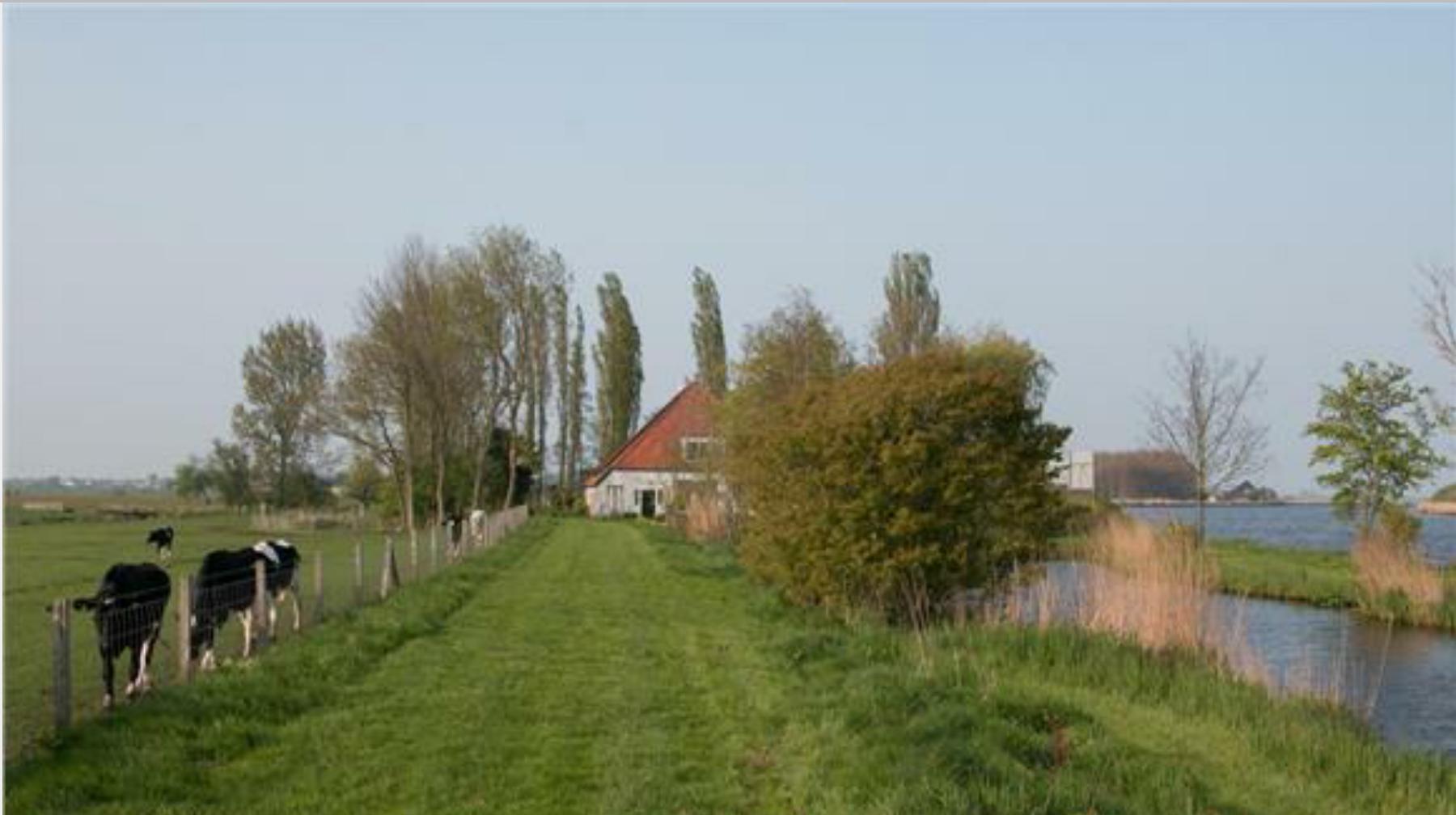 Fotos van de buitenkant tuin van het huis for Huis in de tuin